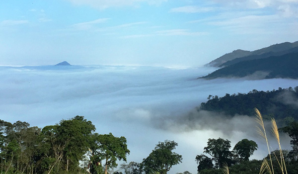 Sea of clouds view from the top of Phu Xai Lai Leng laos mountains