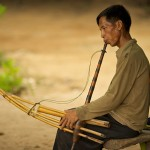 Natural material make up Khen - a traditional music instrument of Lao people