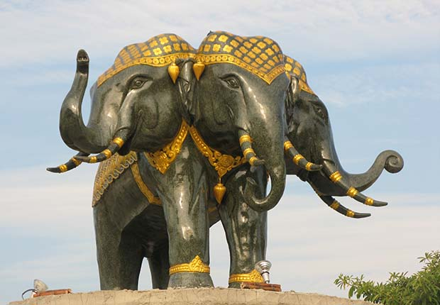 Three-head elephant in Laos