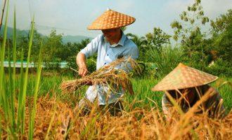 Wonderful Laos Family Retreat – 6 Days