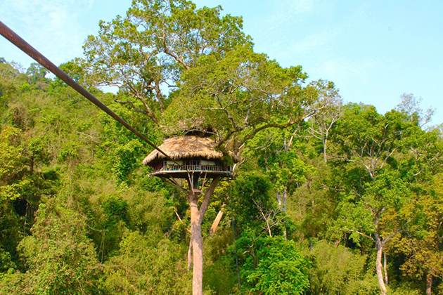 Bokeo Nature Reserve & The Gibbon Experience