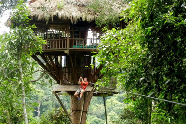 Zipline experience in Bokeo Nature Reserve