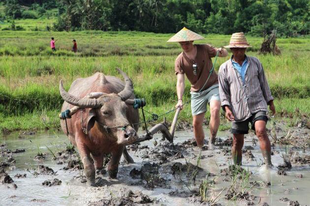 luang-prabang-rice-experience-laos-tours