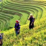 Authentic Ethnic of Laos, Laos Tours Packages