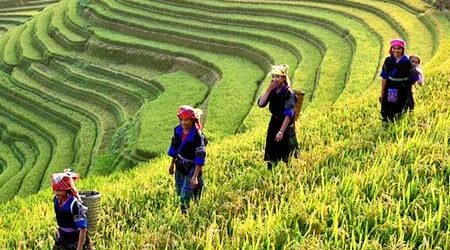 Authentic Ethnics Tour from North to South of Laos – 11 Days