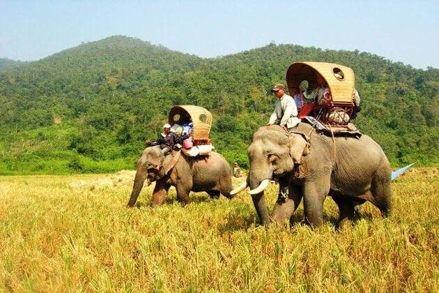 best-time-to-visit-laos