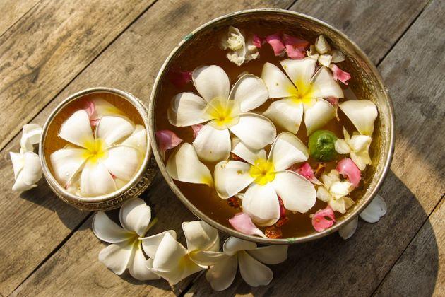 dok champa laos national flower