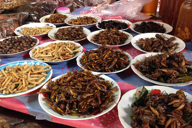 laos cuisine from insect