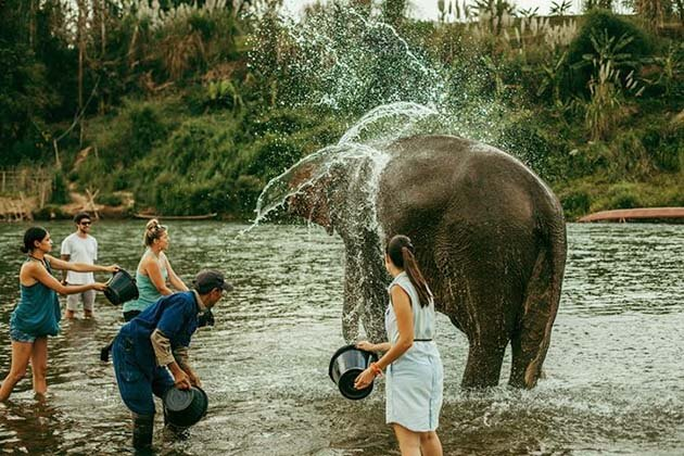 Manda Lao, Elephant Camps around Luang Prabang, Laos Luxury Tour