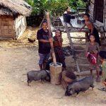 Khmu Village, Adventure in Laos Tour Packages