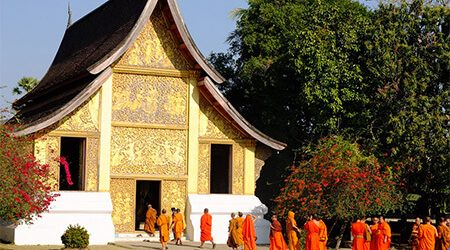 Early Birth Promotion, Big Deal for Laos Tours 2020- 2021